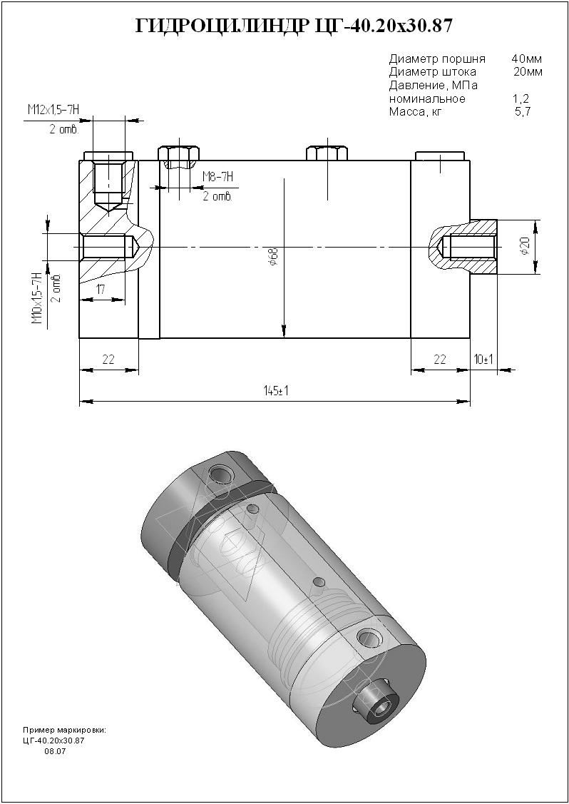 Гидроцилиндр ЦГ-40.20х30.87